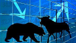 bear bull market